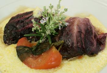 Roulade von Radicchio und Lamm mit Frischkäsepolenta