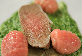 Hirschkalbsrücken im Salzteig auf Petersiliencreme mit Rote-Rüben-Gnocchi