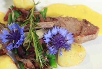 Lammkoteletts mit Paprikasauce und Bohnen