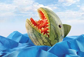 Melonenhai mit Gummibärchen