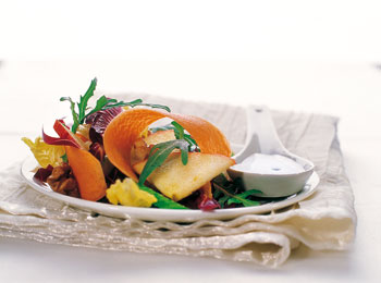 Bunter Karotten-Radicchiosalat