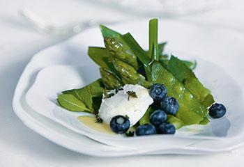 Zuckerschoten-Minz-Salat mit Ziegenfrischkäse Foto: © Marlo Scheder-Bieschin