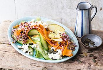 Bunter Salat von Karotte, Gurke, Kohlrabi und Apfel Foto: © Maria Grossmann & Monika Schürle