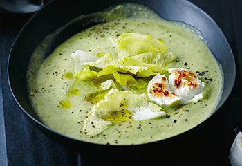 Erdäpfel-Endiven-Suppe mit Ziegenkäse Foto: © Thorsten Suedfels