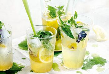 Zitronenverbenesirup mit Vanille Foto: © Thorsten Suedfels