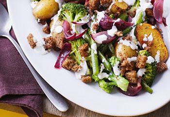 Erdäpfel-Gemüse-Salat mit Croûtons Foto: © Monika Schürle