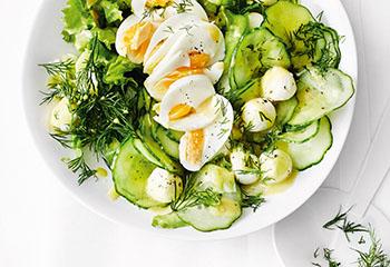 Gurkensalat mit Mozzarella und Ei Foto: © Thorsten Suedfels