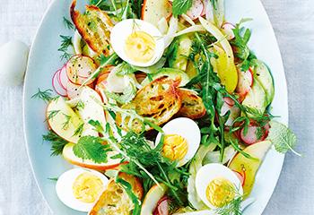 Fenchel-Apfel-Salat mit Ei, Radieschen und Rucola Foto: © Janne Peters