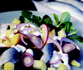 Heringssalat mit Äpfeln und Kartoffeln